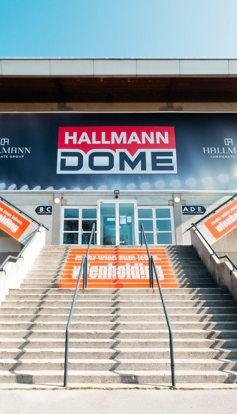 HallmannDome-100